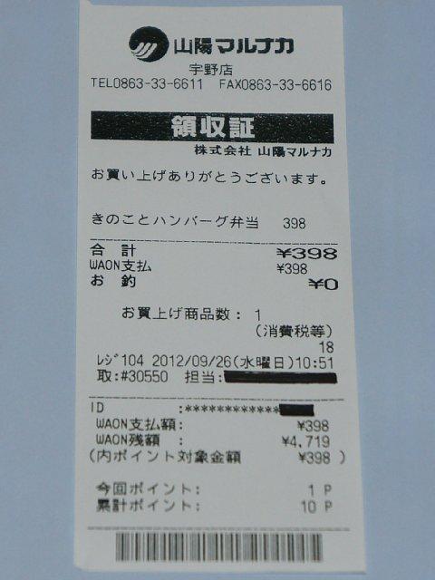 P12092602vga