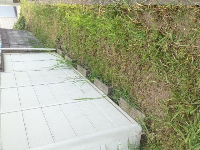 チマチマ草刈り