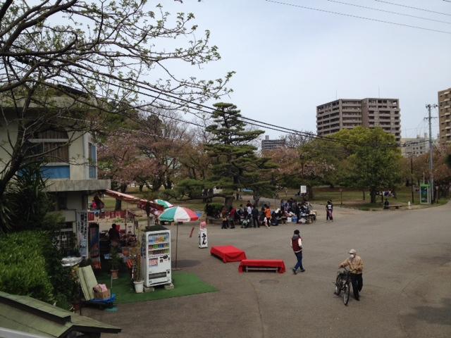 ちょいと遅めの花見 in 徳島