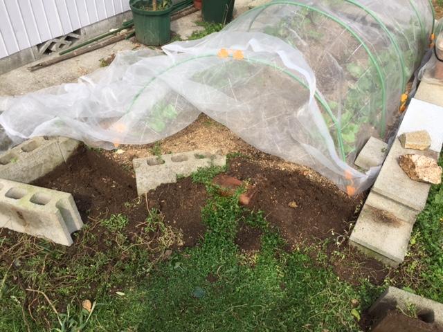 菜園スペース拡張病