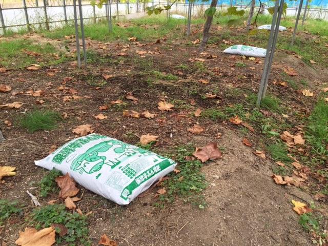 堆肥運搬作業