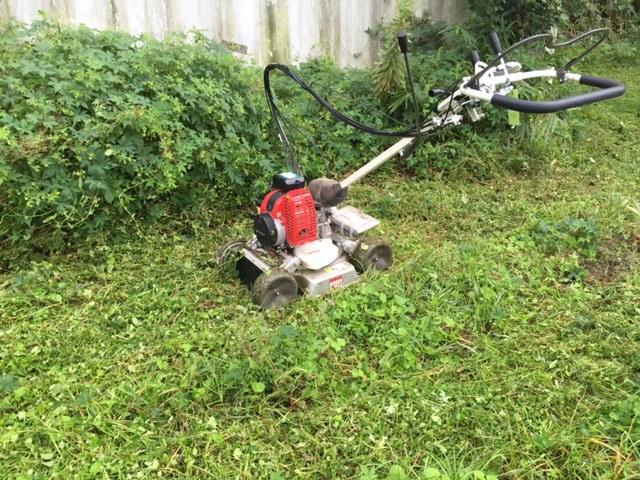 明日の為の草刈り