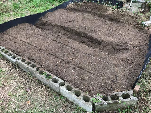 久しぶりに庭